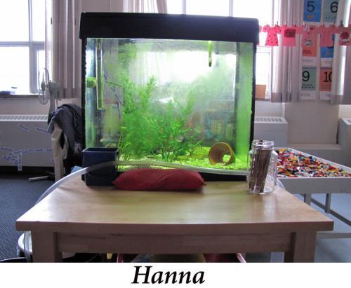 Hanna+4