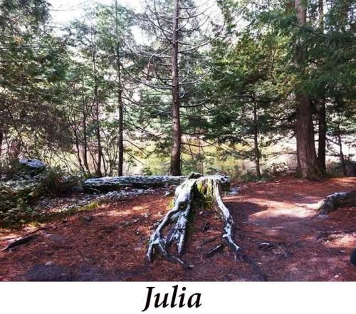 Julia+