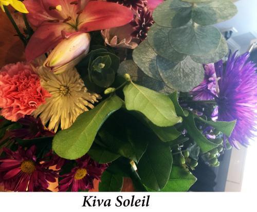 Kiva+Soleil+Wareham-Browne,+4