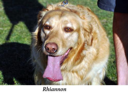 Rhiannon+Hayes,