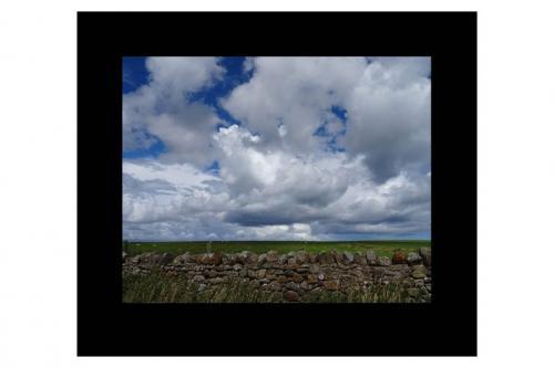 landscape 5.