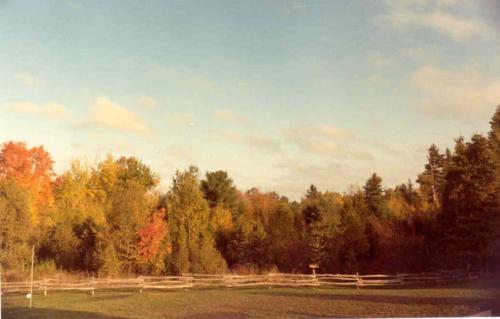 1987 11 Farm